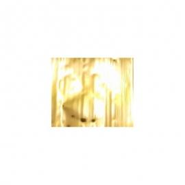 Foils M'Nails 4x50cm x 10cm