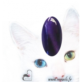 Gel Cat eyes 22
