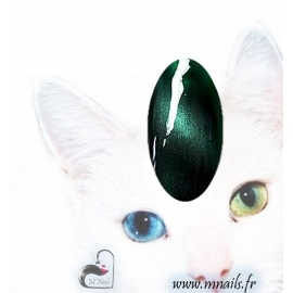 Gel Cat eyes 24
